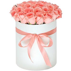 Доставка цветов в г.россошь где купить цветы гвоздика